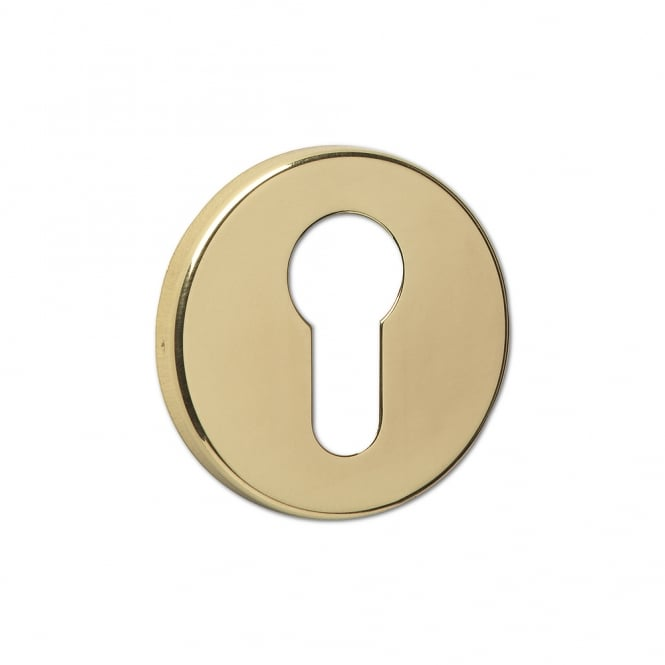 Asec Urban Polished Brass Concealed Fixing Euro Escutcheon